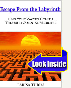 escape from the labyrinth